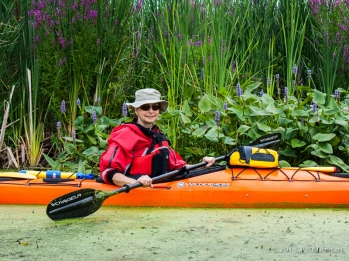 Lori Enjoys Colorful Wildflowers While Kayaking East Bay, NY