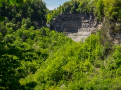 Taughannock Falls glimpsed from South Rim Trail