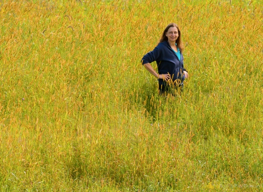 Lori in field of Timothy Grass