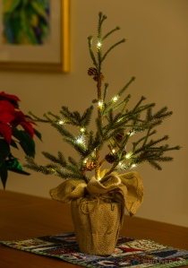 Small Christmas tree lit with LED lights