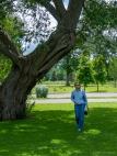 Lori walks among old weather-beaten trees