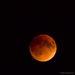 The full moon in eclipse, totally within the earth's shadow.