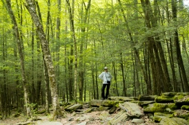 Lori pauses in the woods