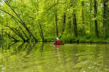 Lori canoeing along Owasco Inlet.