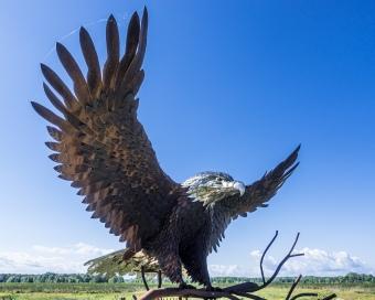 Bald Eagle Sculpture by James Seaman